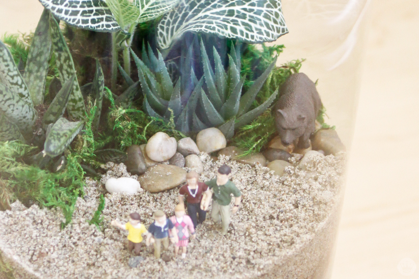 Family vacation terrarium (with photobombing bear)