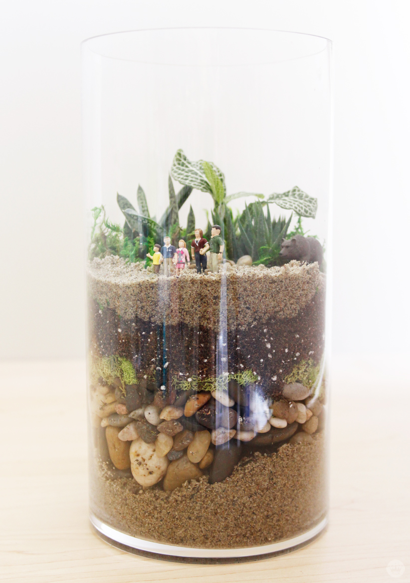 Family vacation DIY Father's Day Terrarium