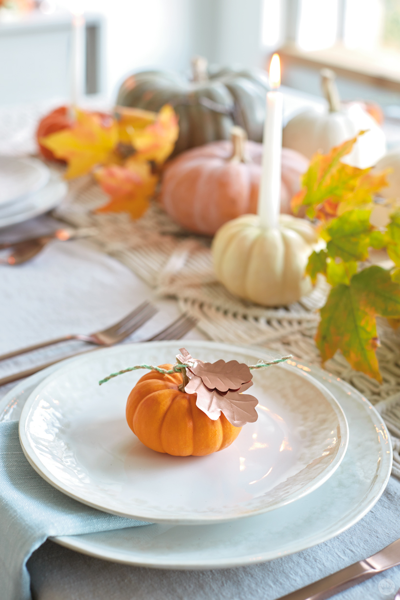 Small pumpkin with copper colored paper leaves at place setting
