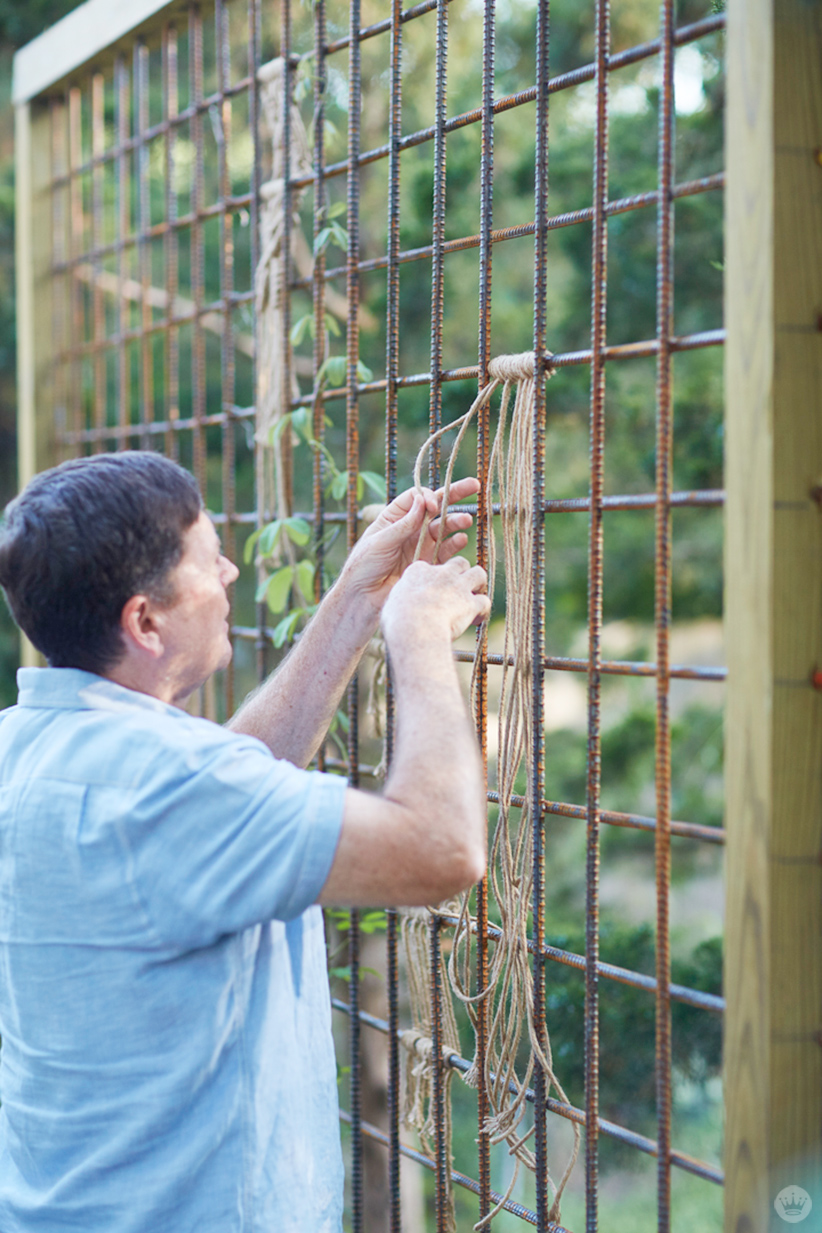 Hallmark Photo Stylist Andy N. shows how he creates macramé yard art on a trellis in his garden.