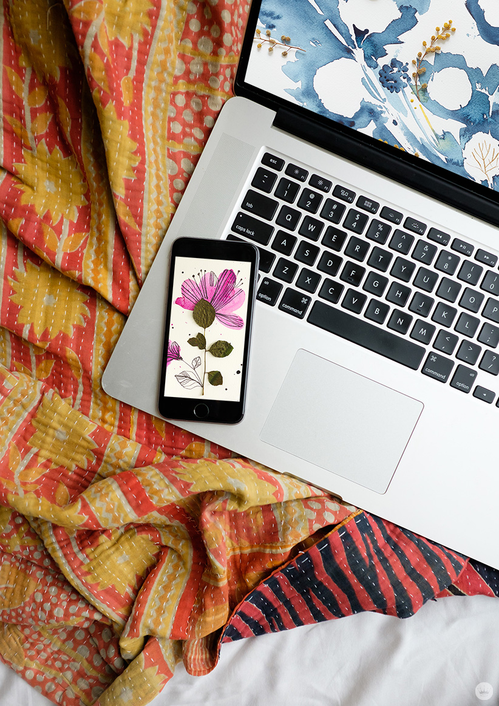 free digital wallpaper pressed flower art from hallmark