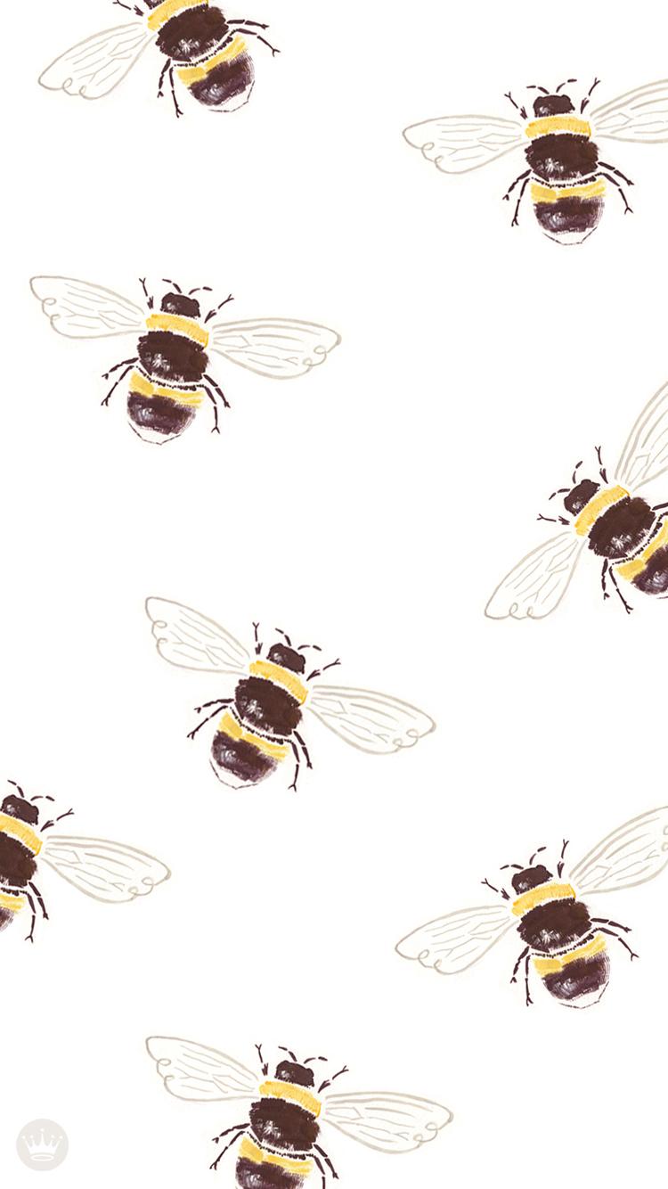 Wallpaper download blog - Download Bee Desktop Wallpaper Iphone Wallpaper
